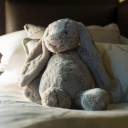 Sleepbox Rabbit